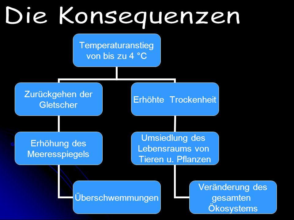 Im Kyoto- Protokoll wurde 1997 festgelegt (Deutschland unterschrieb am 26. April 2002): Bis zum Jahr 2012 sollen 168 Industrieländer insgesamt die CO2