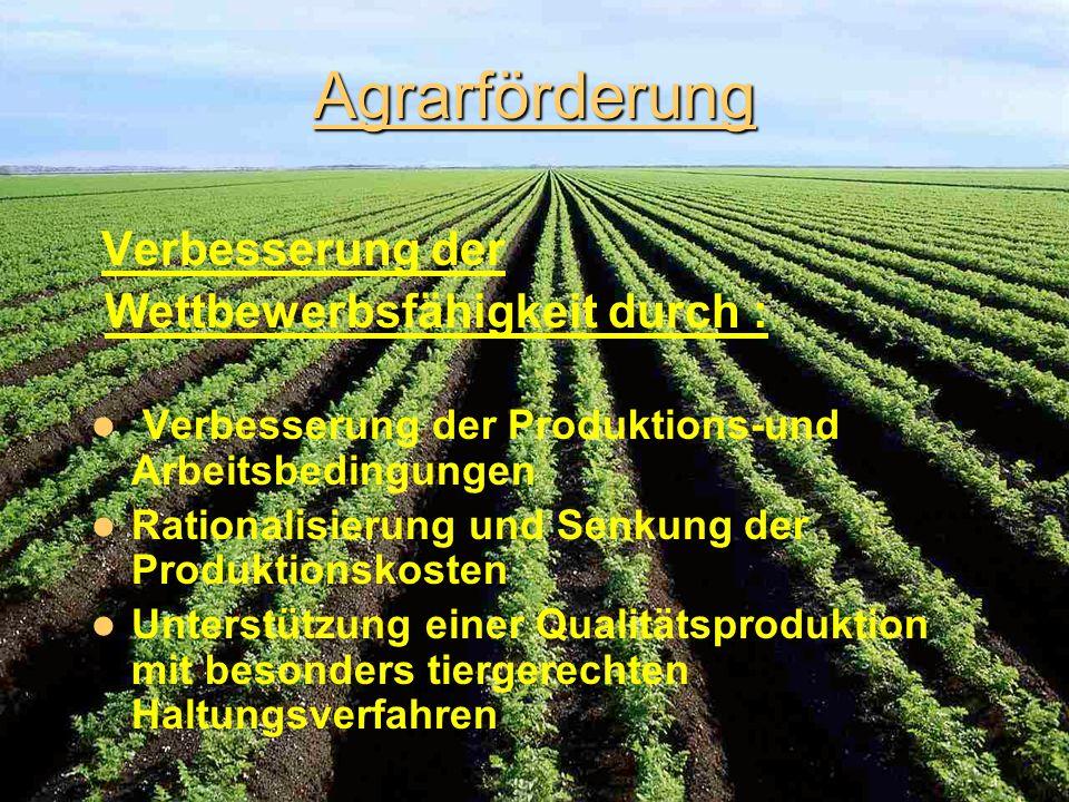 Ziele der Agrarförderung Verbesserung der Wettbewerbsfähigkeit Verbesserung der Umweltbedingungen im Bereich Landwirtschaft Vorbeugung von Pleitegänge