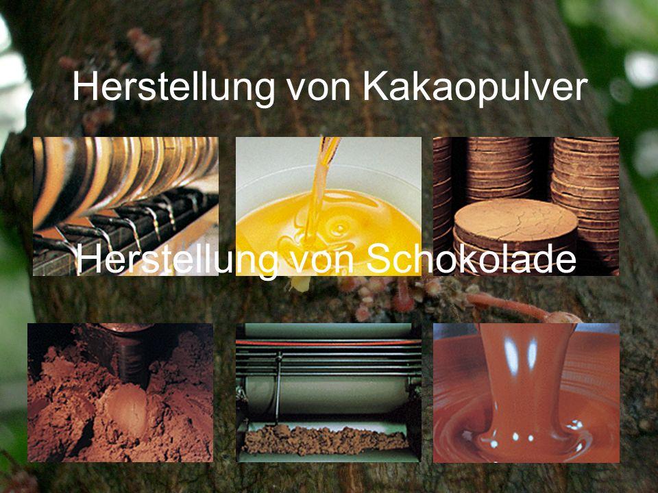 Herstellung von Kakaopulver Herstellung von Schokolade