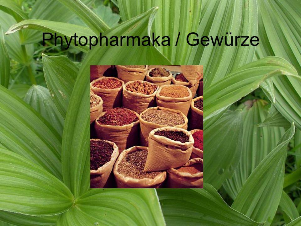 Phytopharmaka / Gewürze