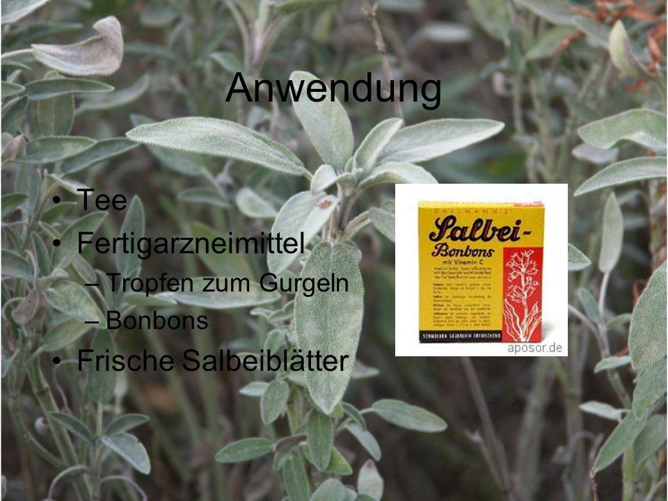 Anwendung Tee Fertigarzneimittel –Tropfen zum Gurgeln –Bonbons Frische Salbeiblätter