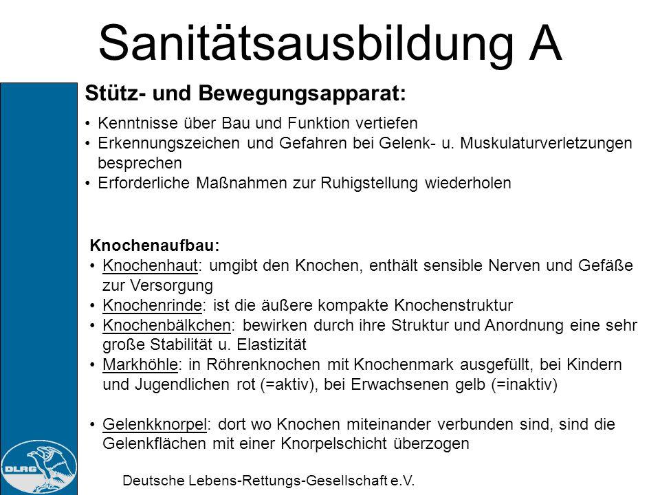 Deutsche Lebens-Rettungs-Gesellschaft e.V. Sanitätsausbildung A Stütz- und Bewegungsapparat: