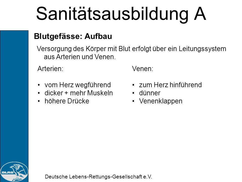 Deutsche Lebens-Rettungs-Gesellschaft e.V. Sanitätsausbildung A = Atrio-Ventrikular-Knoten Pro Herzschlag wird ca. 70-80 ml Blut bewegt