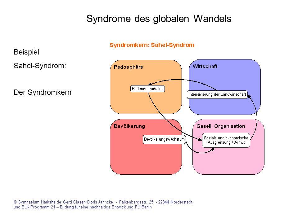 Syndrome des globalen Wandels Beispiel Sahel-Syndrom: Der Syndromkern © Gymnasium Harksheide Gerd Clasen Doris Jahncke - Falkenbergsstr. 25 - 22844 No