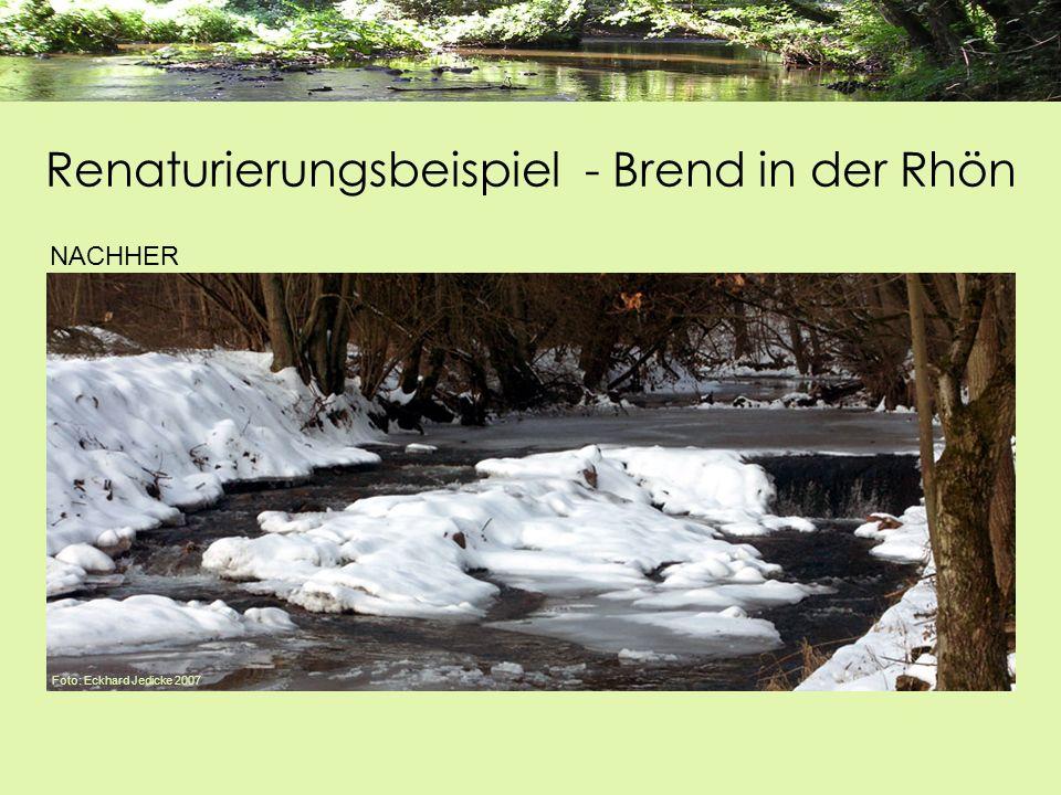 NACHHER Foto: Eckhard Jedicke 2007 Renaturierungsbeispiel - Brend in der Rhön