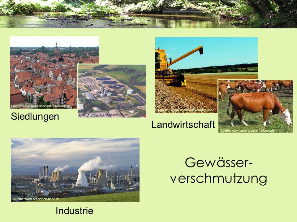Gewässer- verschmutzung Quelle: www.branchen-baer.de Industrie Quelle: www.schleswig-holstein.de Quelle: www.greenpeace-freiburg.de Landwirtschaft Sie
