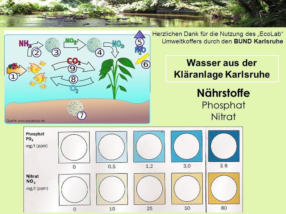 Nährstoffe Phosphat Nitrat Wasser aus der Kläranlage Karlsruhe Quelle: www.aqua4you.de Herzlichen Dank für die Nutzung des EcoLab Umweltkoffers durch