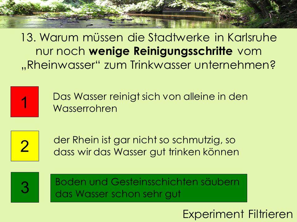 13. Warum müssen die Stadtwerke in Karlsruhe nur noch wenige Reinigungsschritte vom Rheinwasser zum Trinkwasser unternehmen? Boden und Gesteinsschicht