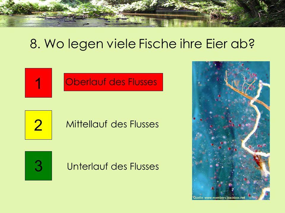 8. Wo legen viele Fische ihre Eier ab? Unterlauf des Flusses 1 2 Oberlauf des Flusses 3 Mittellauf des Flusses Quelle: www.members.blackbox.net