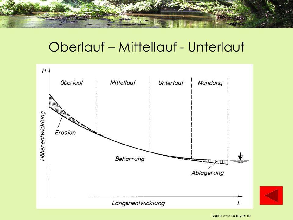 Oberlauf – Mittellauf - Unterlauf Quelle: www.lfu.bayern.de