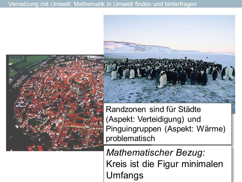 Randzonen sind für Städte (Aspekt: Verteidigung) und Pinguingruppen (Aspekt: Wärme) problematisch Vernetzung mit Umwelt: Mathematik in Umwelt finden u
