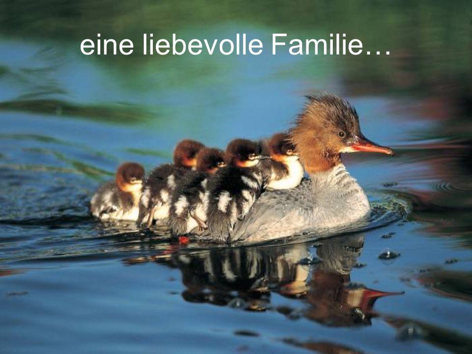 eine liebevolle Familie…
