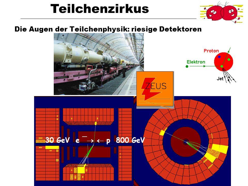 Teilchenzirkus Universität BonnVon Quarks zu Quasaren Oktober 2004 Die Augen der Teilchenphysik: riesige Detektoren 30 GeV e ¯ p 800 GeV