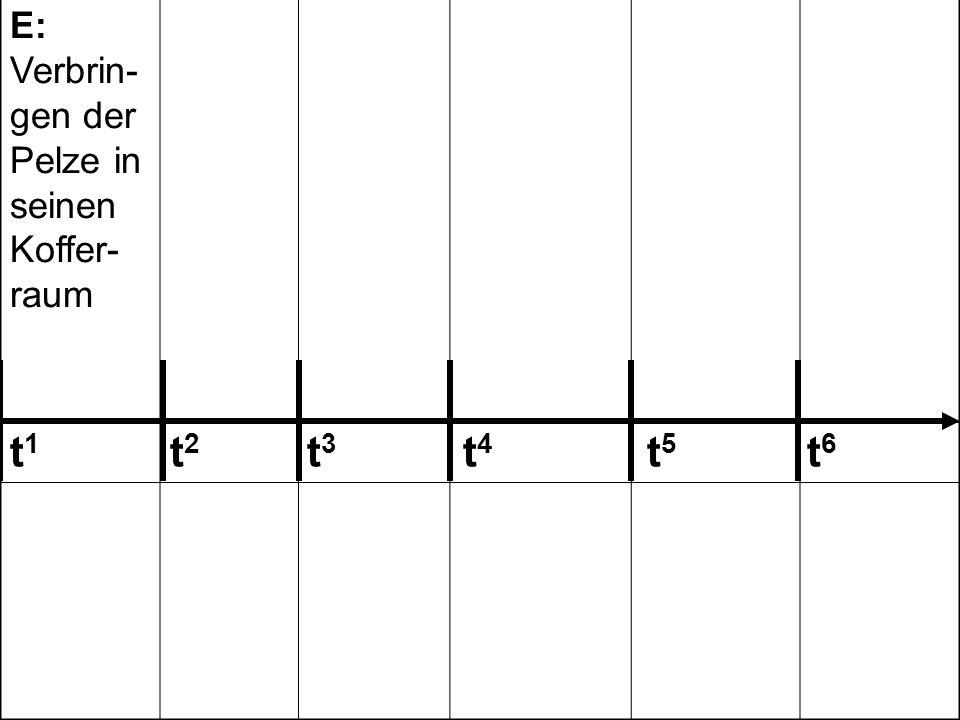 E: Verbrin- gen der Pelze in seinen Koffer- raum E: Vor- schlag gegen- über P P: Fest- nahme des E, Be- schlag- nahme P: Laden der Stola in den Koffer- raum des privaten PKW P: Auffor- dern des E zur Unter- schrift/ Zuzwin- kern E: Unter- schrift unter das Proto- koll 242 243 123 t 1 t 2 t 3 t 4 t 5 t 6