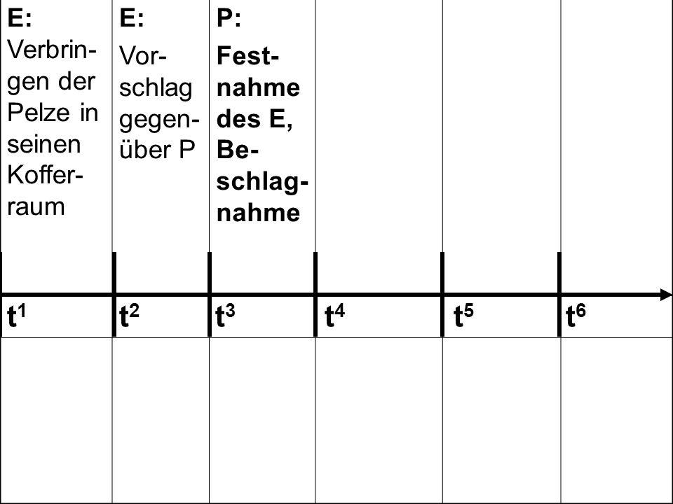 E: Verbrin- gen der Pelze in seinen Koffer- raum E: Vor- schlag gegen- über P P: Fest- nahme des E, Be- schlag- nahme P: Laden der Stola in den Koffer- raum des privaten PKW P: Auffor- dern des E zur Unter- schrift/ Zuzwin- kern E: Unter- schrift unter das Proto- koll 242 243 123 303 185 t 1 t 2 t 3 t 4 t 5 t 6