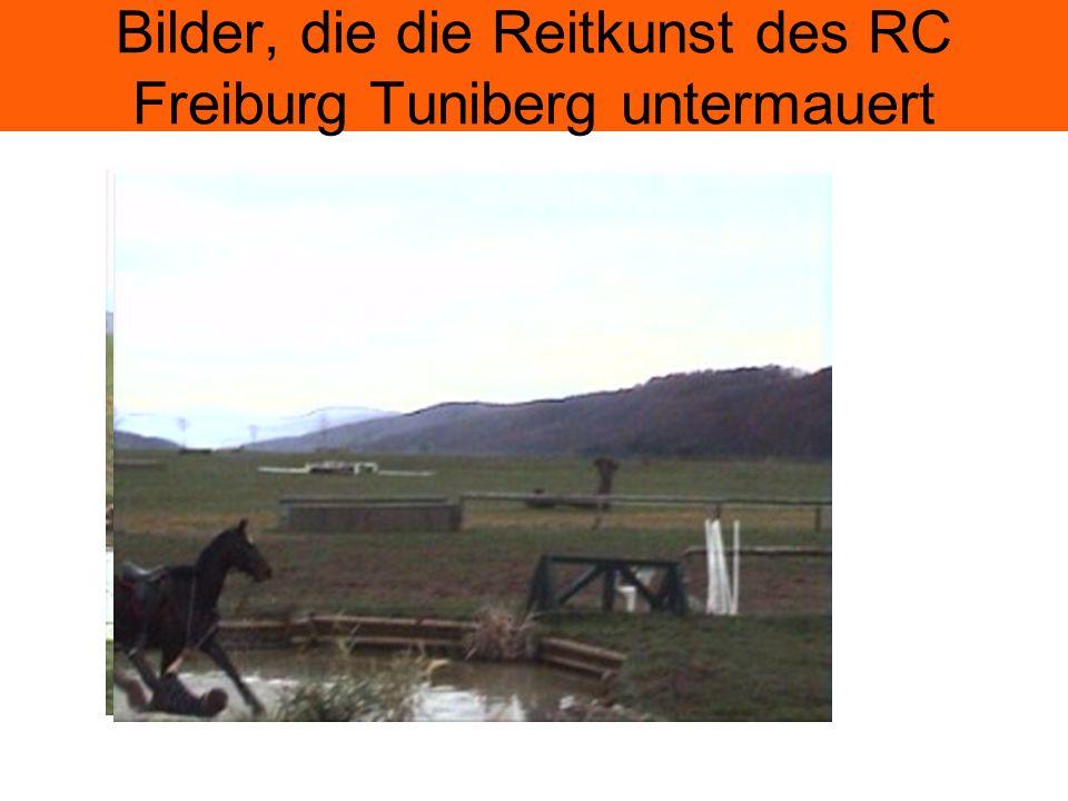Bilder, die die Reitkunst des RC Freiburg Tuniberg untermauert