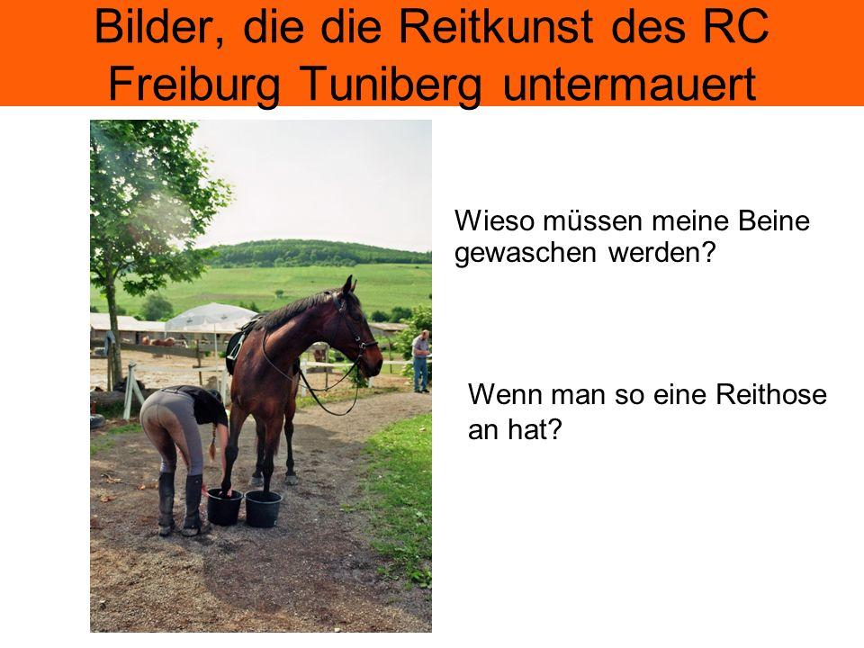 Bilder, die die Reitkunst des RC Freiburg Tuniberg untermauert Wieso müssen meine Beine gewaschen werden.
