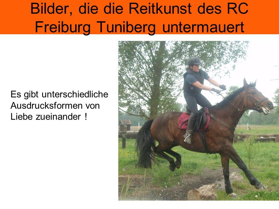 Bilder, die die Reitkunst des RC Freiburg Tuniberg untermauert Es gibt unterschiedliche Ausdrucksformen von Liebe zueinander !