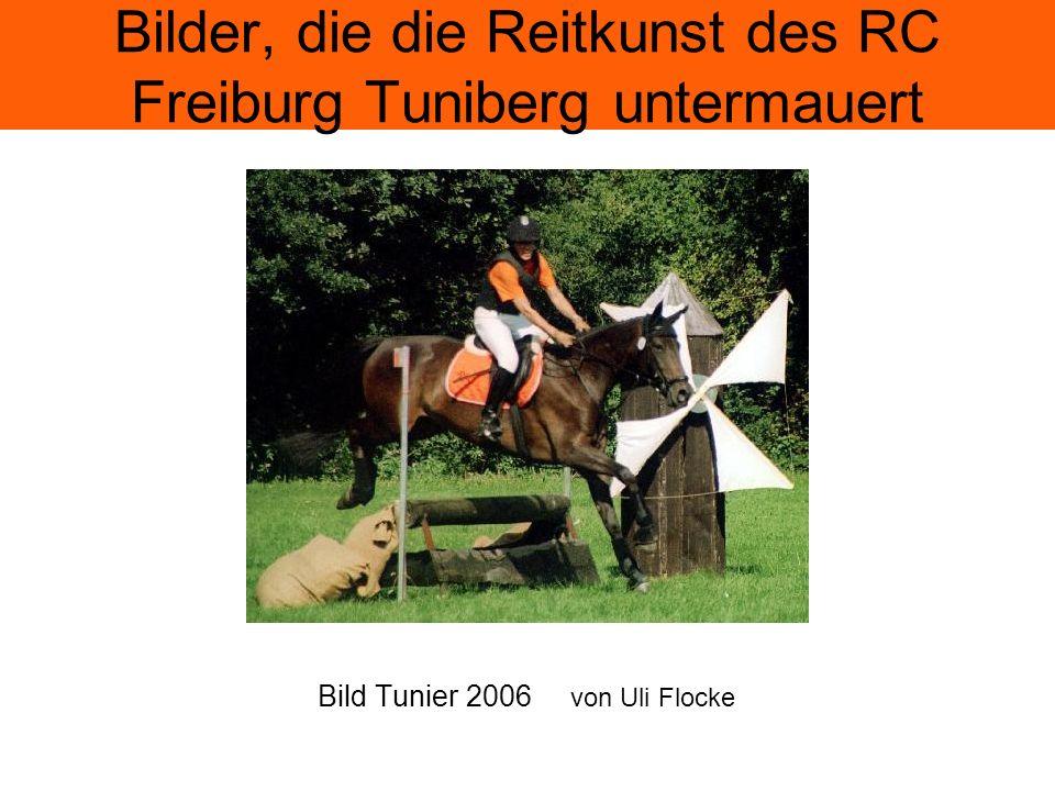 Bilder, die die Reitkunst des RC Freiburg Tuniberg untermauert Bild Tunier 2006 von Uli Flocke