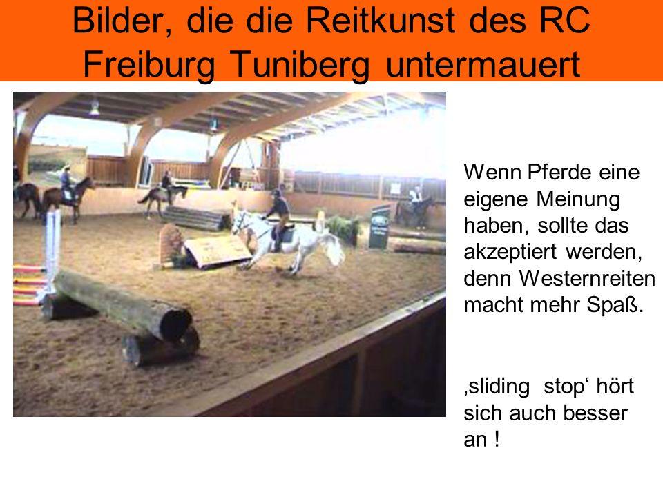 Bilder, die die Reitkunst des RC Freiburg Tuniberg untermauert Wer solche Zuschauer hat, kann doch zufrieden sein !