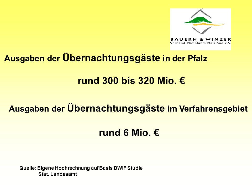 Ausgaben der Übernachtungsgäste in der Pfalz rund 300 bis 320 Mio.