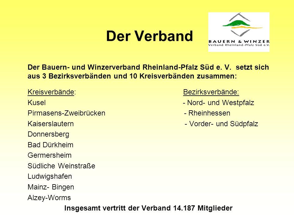 Landwirtschaftliche Betriebe in Rheinland-Pfalz 0 50000 100000 150000 200000 250000 194919601970198019912002 Quelle: Stat.