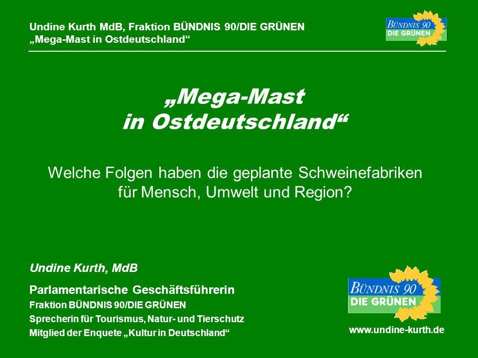 Mega-Mast in Ostdeutschland www.undine-kurth.de Undine Kurth MdB, Fraktion BÜNDNIS 90/DIE GRÜNEN Mega-Mast in Ostdeutschland Undine Kurth, MdB Parlame