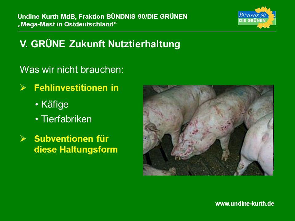 www.undine-kurth.de V. GRÜNE Zukunft Nutztierhaltung Undine Kurth MdB, Fraktion BÜNDNIS 90/DIE GRÜNEN Mega-Mast in Ostdeutschland Was wir nicht brauch