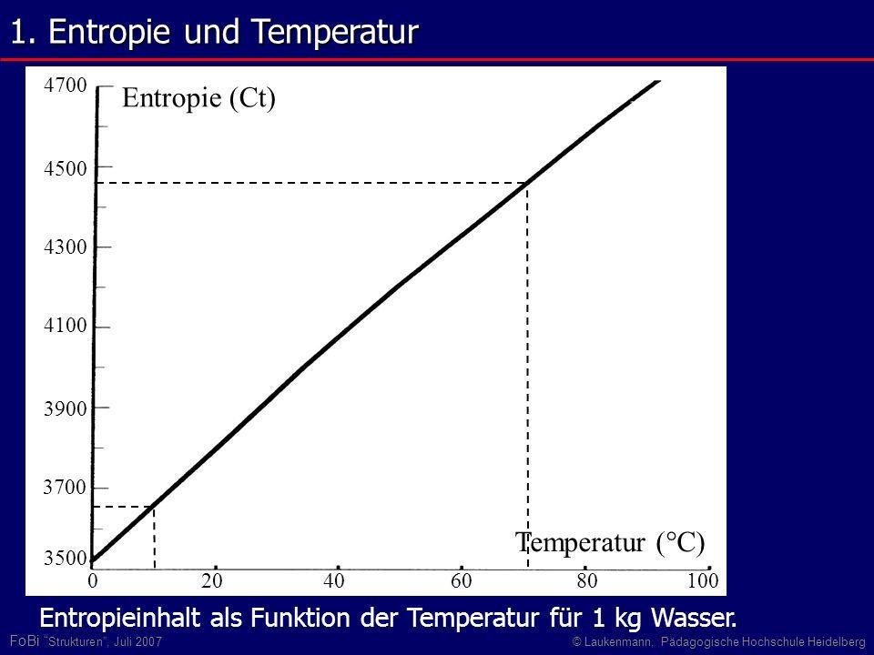FoBi Strukturen, Juli 2007© Laukenmann, Pädagogische Hochschule Heidelberg Temperatur (°C) Entropie (Ct) 20406080100 4700 3500 3700 3900 4100 4300 450