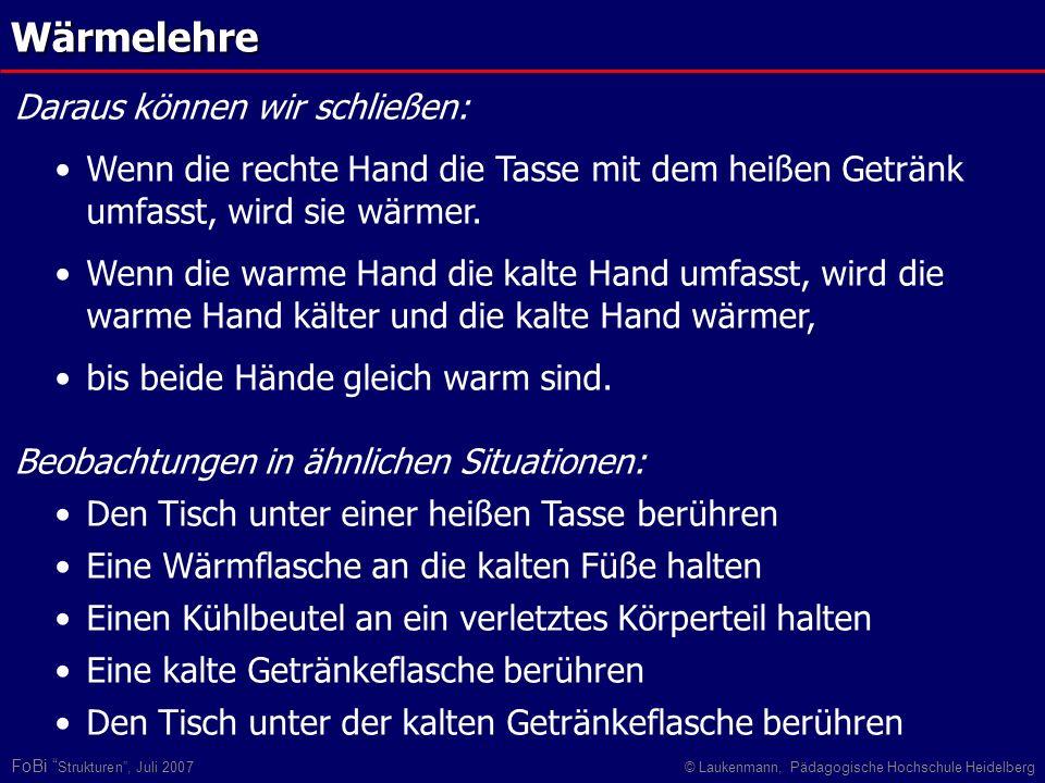 FoBi Strukturen, Juli 2007© Laukenmann, Pädagogische Hochschule Heidelberg Wärmelehre Daraus können wir schließen: Wenn die rechte Hand die Tasse mit
