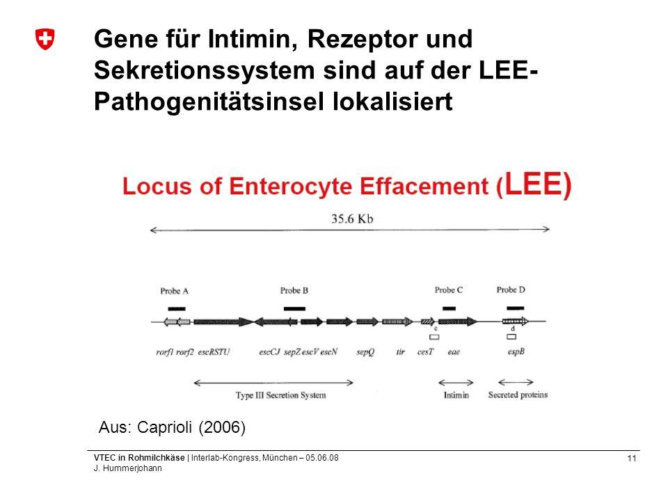 11 VTEC in Rohmilchkäse | Interlab-Kongress, München – 05.06.08 J. Hummerjohann Gene für Intimin, Rezeptor und Sekretionssystem sind auf der LEE- Path