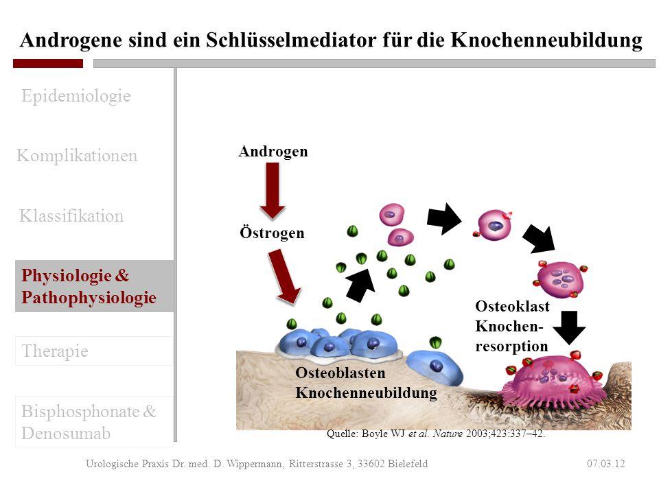 Knochenmetastasen in der Uroonkologie 07.03.12Urologische Praxis Dr. med. D. Wippermann, Ritterstrasse 3, 33602 Bielefeld Osteolytisch Osteoblastisch