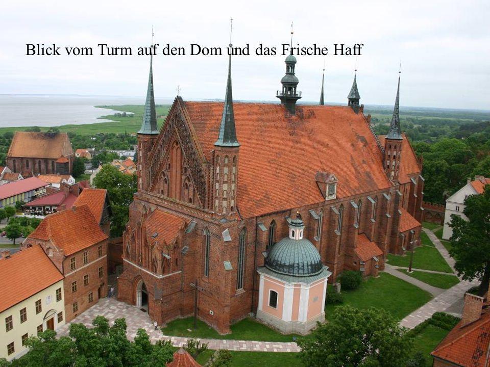 Blick vom Turm auf den Dom und das Frische Haff