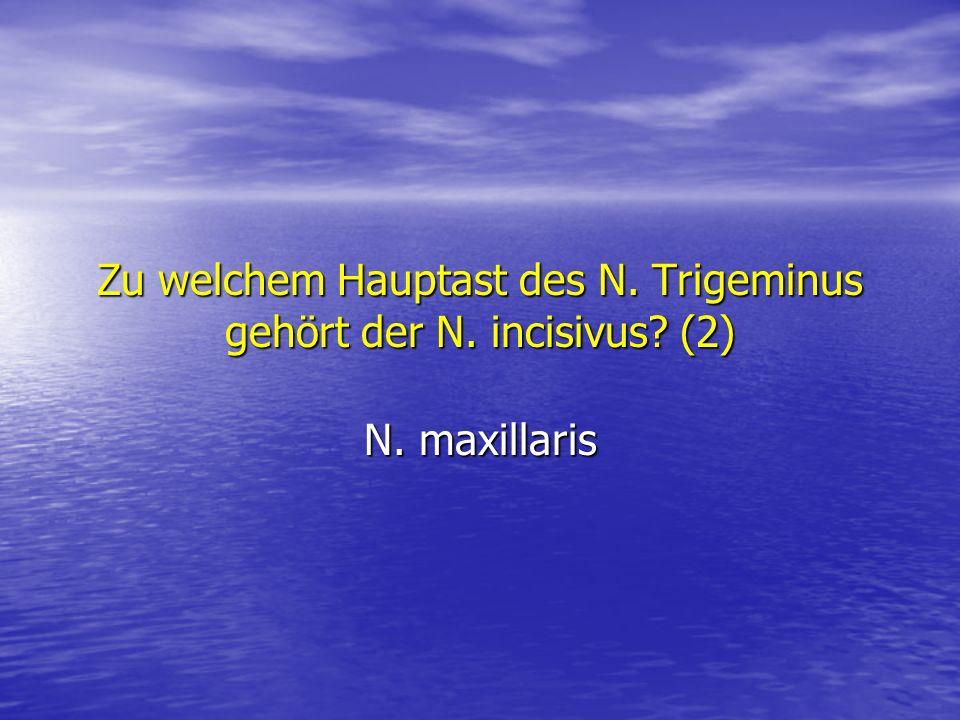 Zu welchem Hauptast des N. Trigeminus gehört der N. incisivus? (2) N. maxillaris