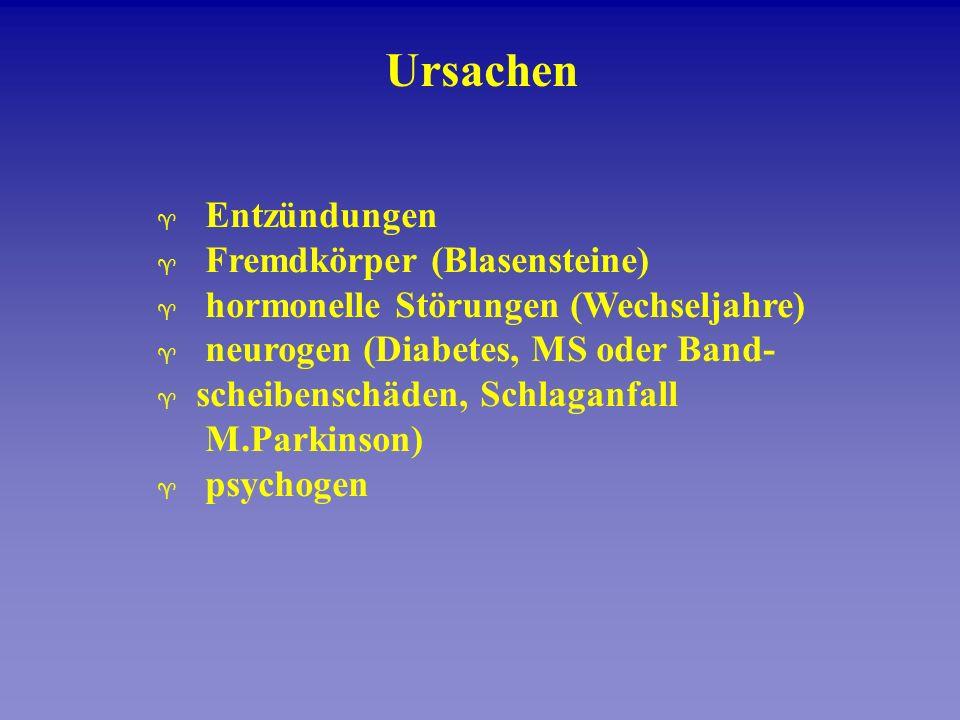 Ursachen ^ Entzündungen ^ Fremdkörper (Blasensteine) ^ hormonelle Störungen (Wechseljahre) ^ neurogen (Diabetes, MS oder Band- ^ scheibenschäden, Schl