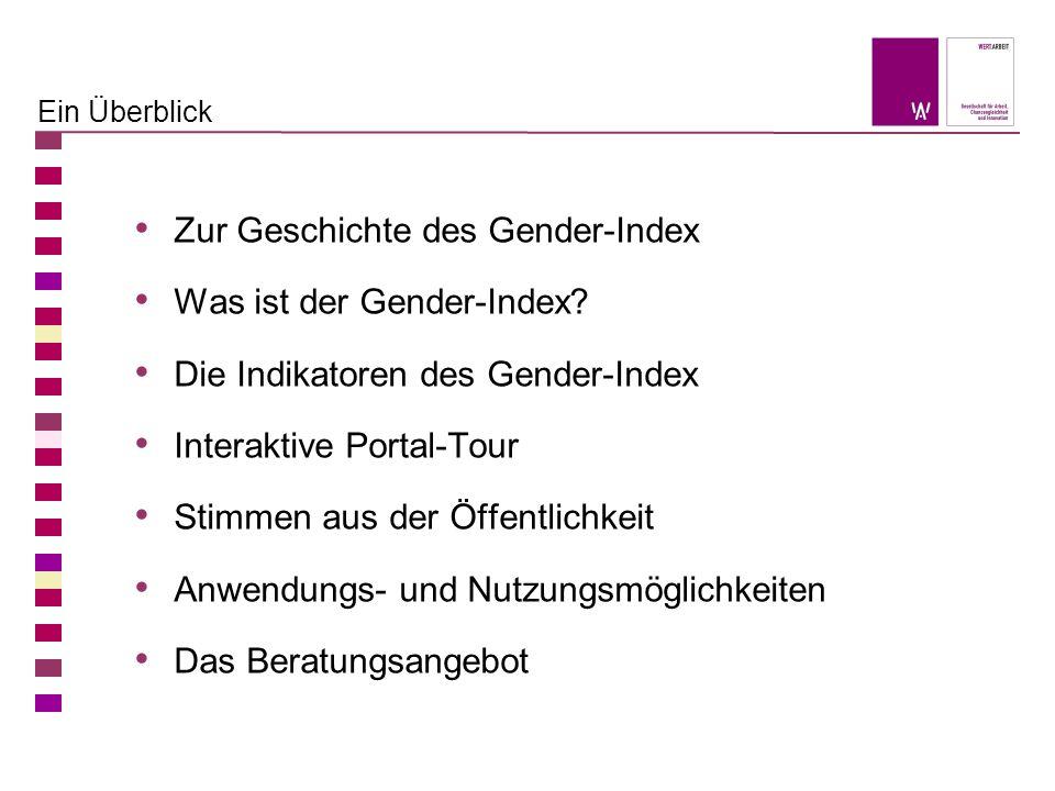 Ein Überblick Zur Geschichte des Gender-Index Was ist der Gender-Index? Die Indikatoren des Gender-Index Interaktive Portal-Tour Stimmen aus der Öffen