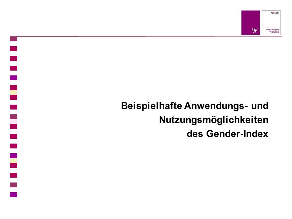 Beispielhafte Anwendungs- und Nutzungsmöglichkeiten des Gender-Index