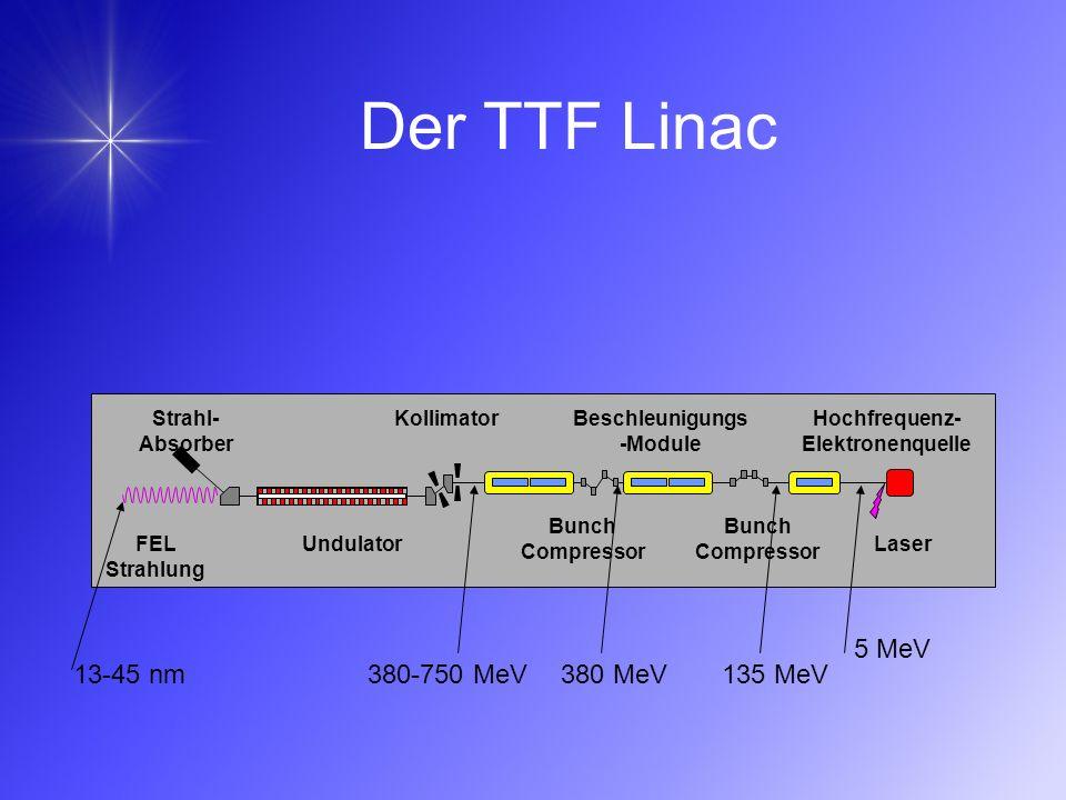 Der TTF Linac FEL Strahlung Strahl- Absorber Hochfrequenz- Elektronenquelle Laser Bunch Compressor Beschleunigungs -Module Kollimator Undulator 5 MeV