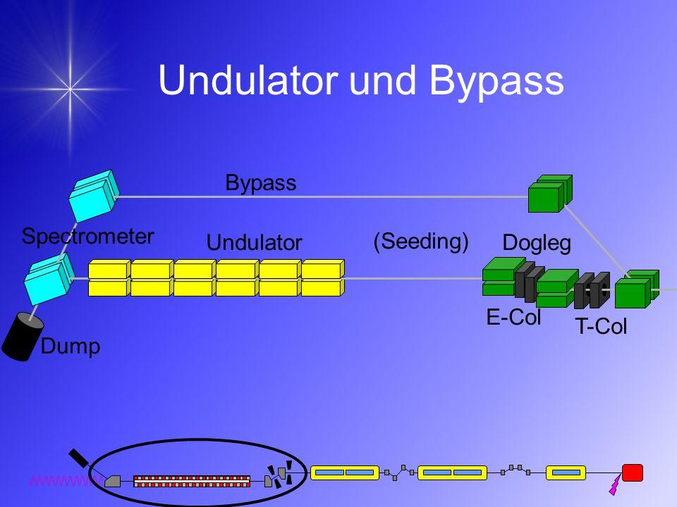 Undulator und Bypass Bypass Undulator (Seeding) Dump Spectrometer T-Col E-Col Dogleg