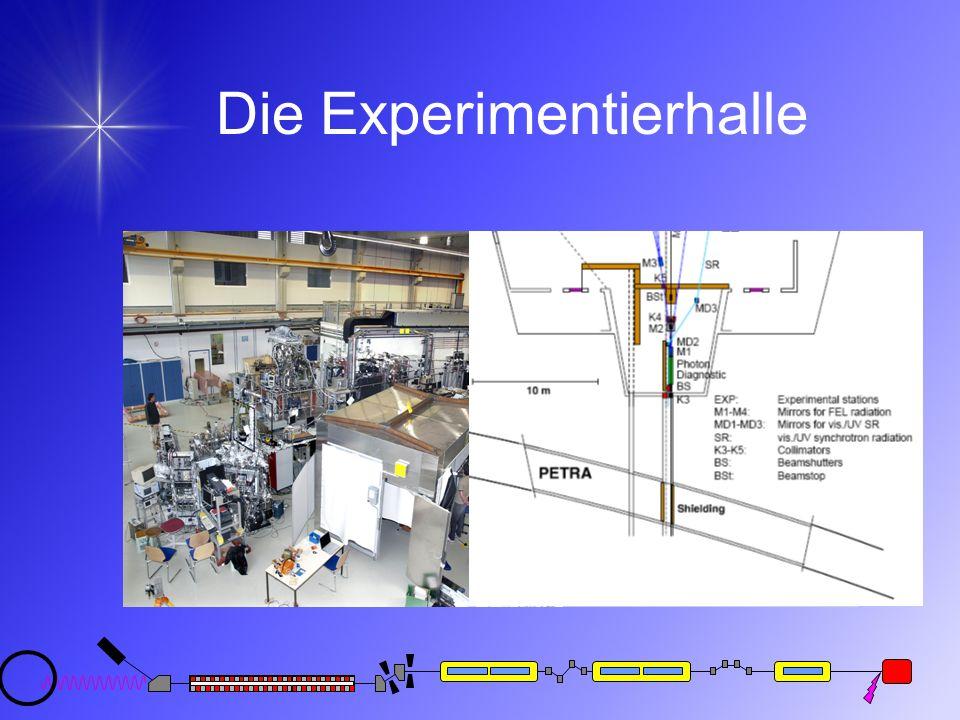 Die Experimentierhalle