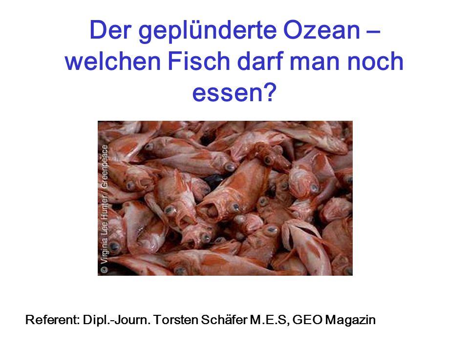 Der geplünderte Ozean – welchen Fisch darf man noch essen? Referent: Dipl.-Journ. Torsten Schäfer M.E.S, GEO Magazin