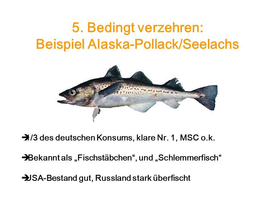 5. Bedingt verzehren: Beispiel Alaska-Pollack/Seelachs 1/3 des deutschen Konsums, klare Nr. 1, MSC o.k. Bekannt als Fischstäbchen, und Schlemmerfisch