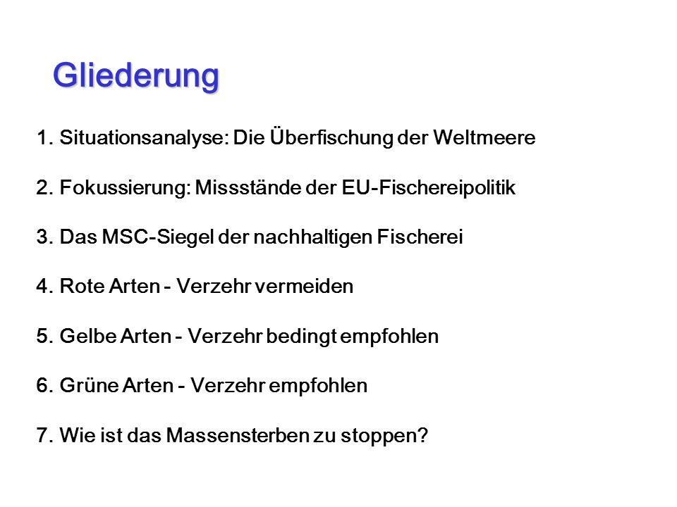 1. Situationsanalyse: Die Überfischung der Weltmeere 2. Fokussierung: Missstände der EU-Fischereipolitik 3. Das MSC-Siegel der nachhaltigen Fischerei