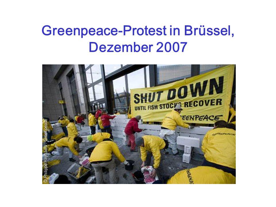 Greenpeace-Protest in Brüssel, Dezember 2007