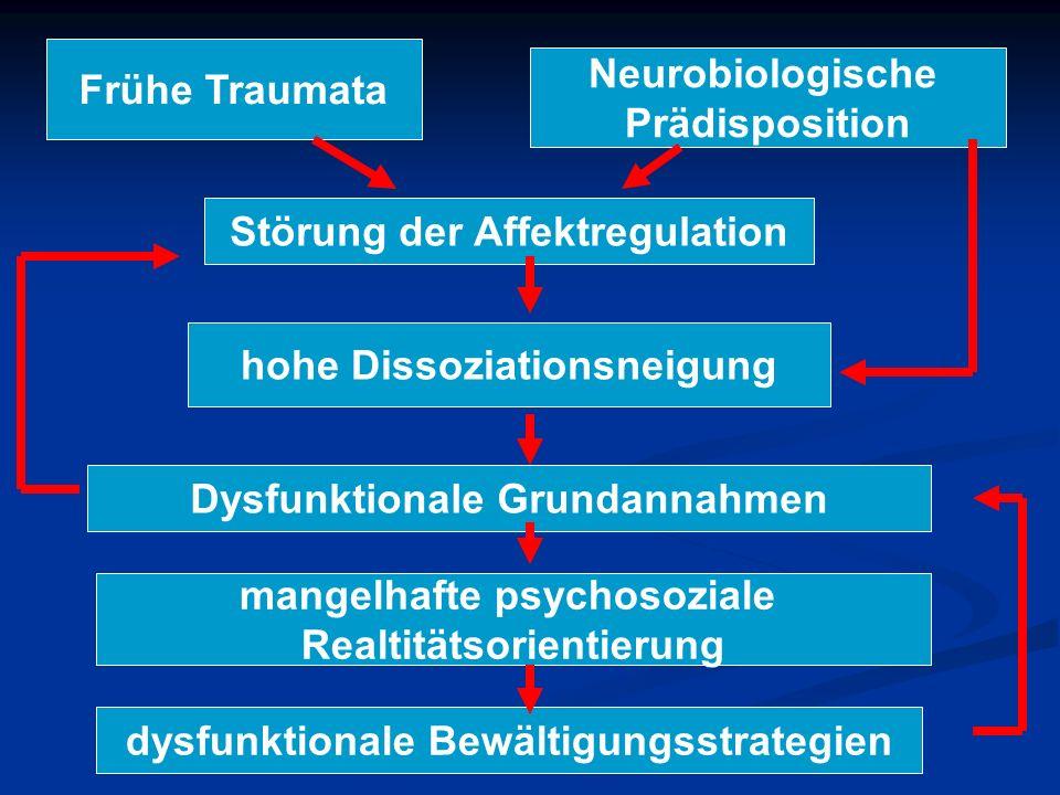 Frühe Traumata Neurobiologische Prädisposition Störung der Affektregulation hohe Dissoziationsneigung Dysfunktionale Grundannahmen mangelhafte psychos