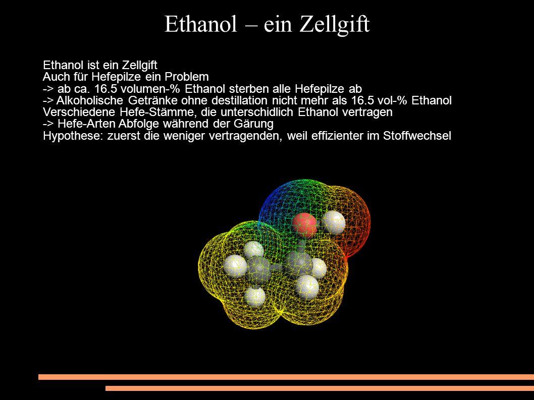 Ethanol – betäubender Genuss Im Jahr 2000 16 000 Todesfälle durch Alkoholmissbrauch in Deutschland -> Giftigkeit von Ethanol wird unterschätzt Hier eine Tabelle zu den Auswirkungen von Alkohol: Menge alkoholhaltiger Getränke BlutalkoholWirkungen 1 Glas Bier (0,33 l) oder 0,2 l Wein < 0,2 enthemmende Wirkung mit Steigerung der Redseligkeit 2–3 Glas Bier oder 0,5 l Wein 0,5 deutliches Nachlassen der Reaktionsfähigkeit, insbesondere auf rote Signale, deutliche Erhöhung der Risikobereitschaft 5–6 Glas Bier oder 1 l Wein 1,0 beginnender Verlust der Bewegungskoordination, des Gleichgewichts und der Reflexe, deutliche Angetrunkenheit 8–9 Glas Bier oder 1,5 l Wein 1,5 Plaudersucht, Selbstgespräch, Stottern und Schwanken, starke Betrunkenheit 11–12 Glas Bier oder 2 l Wein 2,0 Erbrechen, hilfloser Zustand, schwere Gleichgewichtsstörungen, schwerer Rausch ab 2,5 Störung von Atmung und Blutkreislauf, die Bewegungsnerven versagen, das Bewusstsein setzt aus, Lebensgefahr über 4 meist tödlich