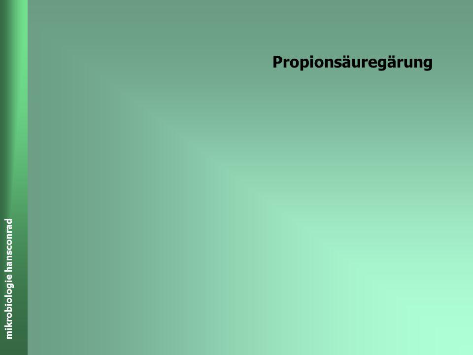 mikrobiologie hansconrad Buttersäure-Gärung C 6 H 12 O 6 CH 3 -CH 2 -CH 2 -COOH + 2 H 2 + 2 CO 2 C 4 H 8 O 2 - + H + ADP + P i 2+1 ATP Wärme + GLYCOLY