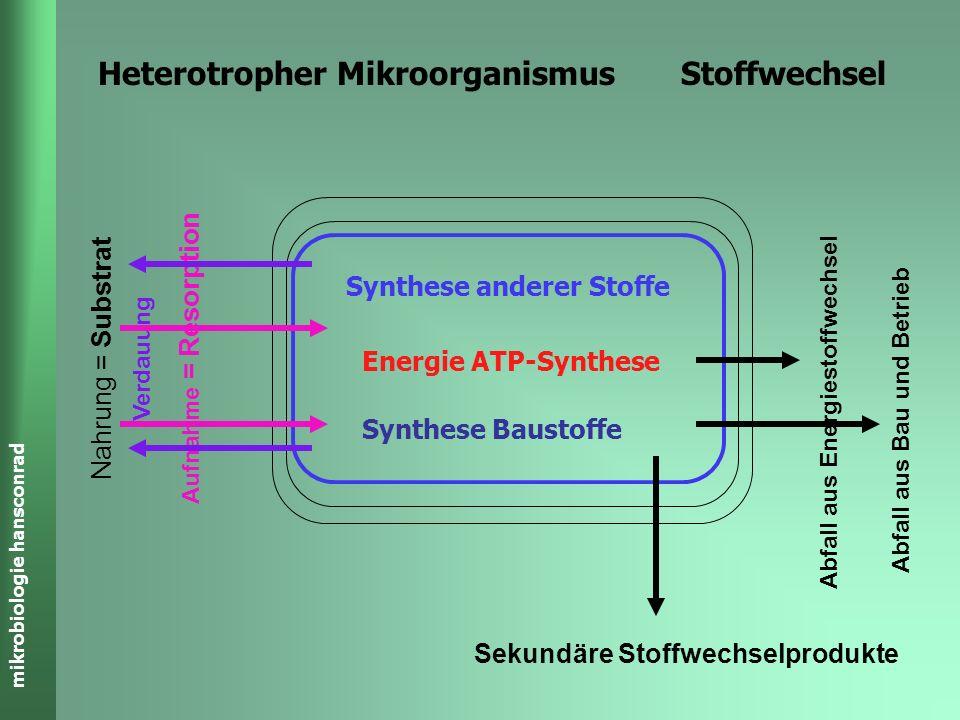 mikrobiologie hansconrad Heterotropher Mikroorganismus Stoffwechsel Nahrung = Substrat Aufnahme = Resorption Abfall aus Energiestoffwechsel Abfall aus Bau und Betrieb Sekundäre Stoffwechselprodukte Energie ATP-Synthese Synthese Baustoffe Synthese anderer Stoffe Verdauung
