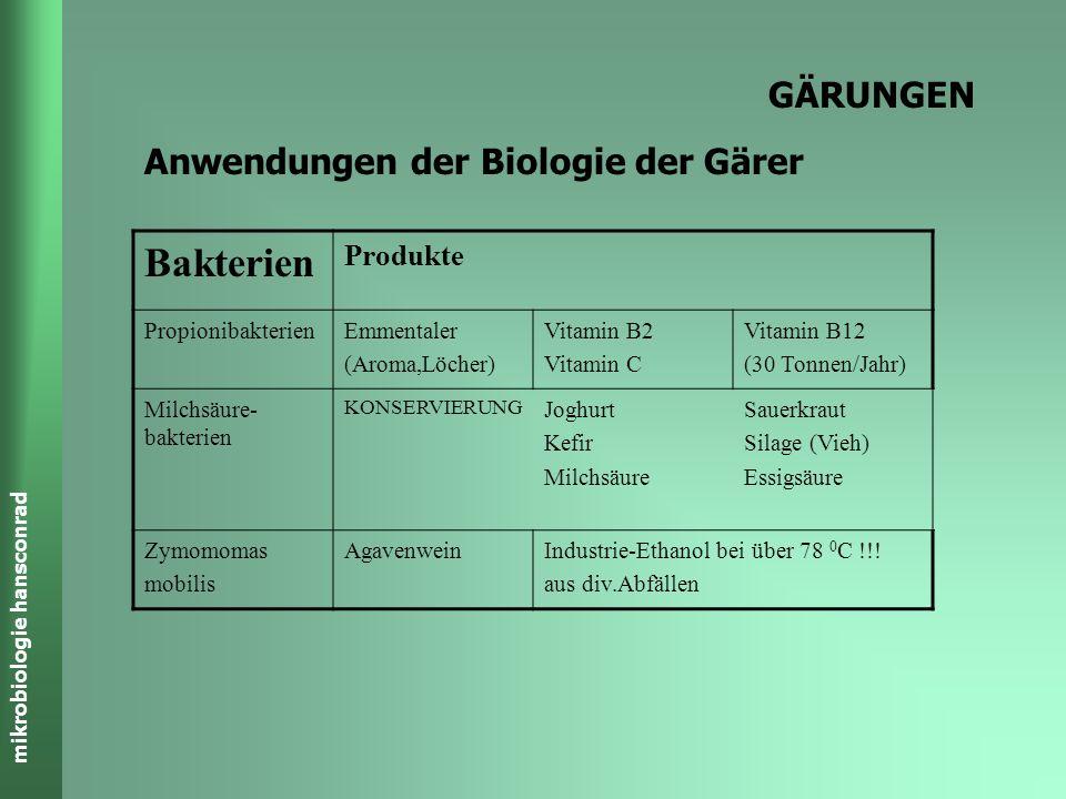 mikrobiologie hansconrad GÄRUNGEN Energiebilanzen C 6 H 12 O 6 C 2 H 5 COOH C3H6O3C3H6O3 CH 3 COOH CO 2 CH 3 CH 2 OH C 6 H 12 O 6 CO 2 235 kJ/mol C3H6