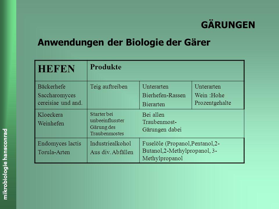 mikrobiologie hansconrad GÄRUNGEN Anwendungen der Biologie der Gärer Bakterien Produkte PropionibakterienEmmentaler (Aroma,Löcher) Vitamin B2 Vitamin